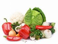 food-importer-list