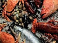 Aquatic-Animals-Inspection-policies
